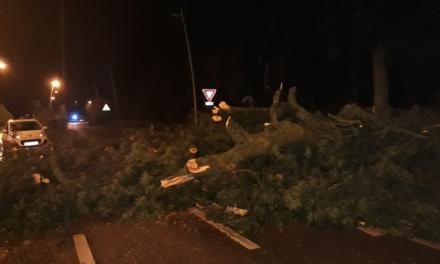 tonnerre, pluie et gros coup de vent : pas de blessés et des dégâts limités