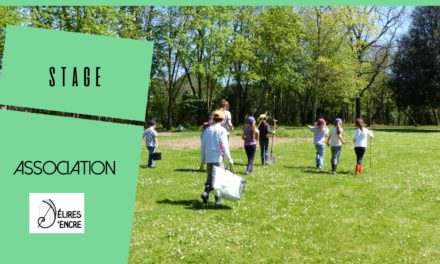 Stage enfant « Nature vagabonde »
