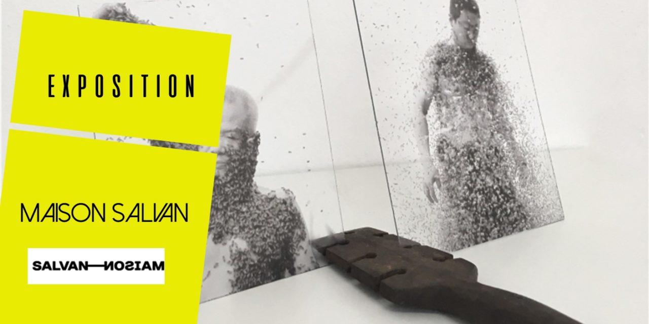 Nouvelle exposition à la Maison Salvan