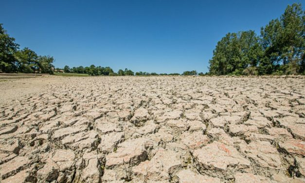 Arrêté de Reconnaissance de Catastrophes Naturelles  relatif à la  Sècheresse 2020